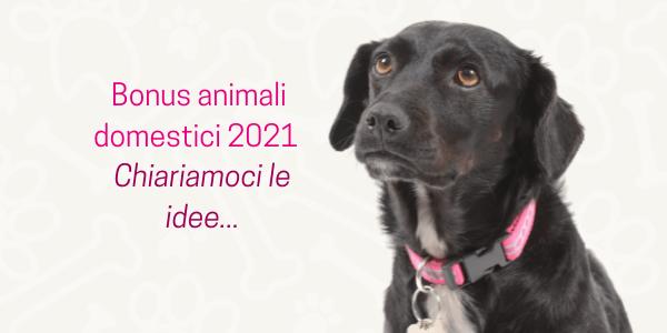 bonus animali domestici 2021